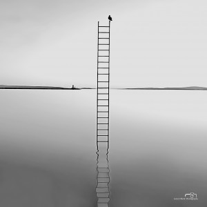 Stairway to heaven I - 2012- FIAP HM ( Fédération Internationale de l'Art Photographique - Honorable Mention), 2nd International Salon of Photography Novi Sad