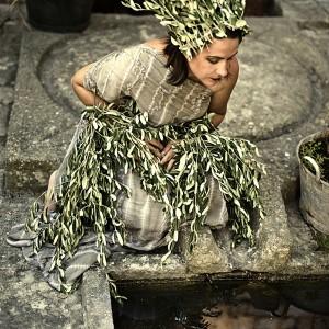 Olives Woman IV