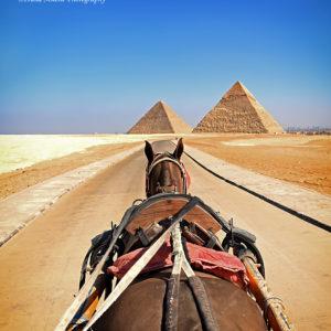 Giza Pyramids III